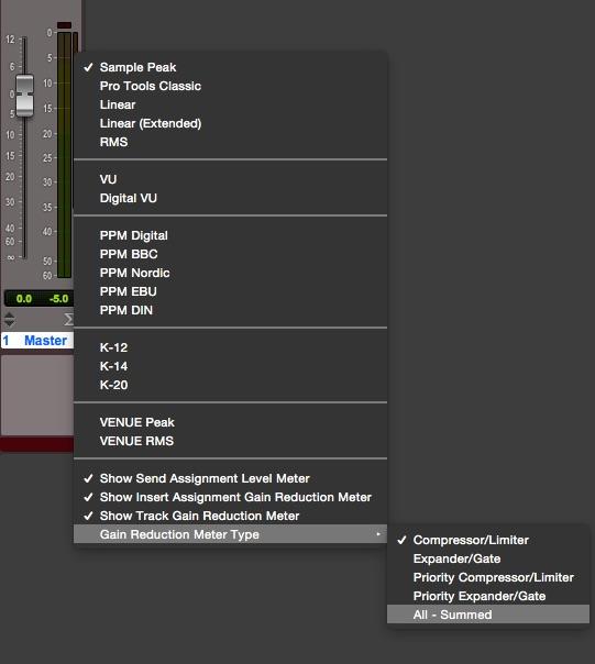 Figura 3 L'opzione per il metering totale dei processori di dinamica