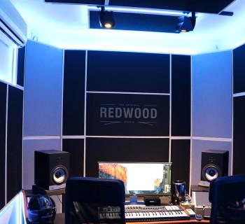 La regia dei Redwood studio