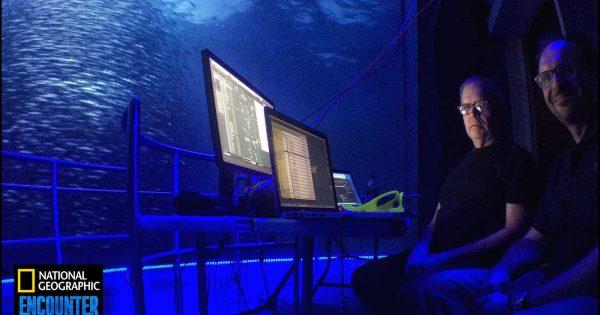 Tutorial steinberg nuendo sabino cannone audio pro mix multicanale immersiv daw surround stereo audiofader